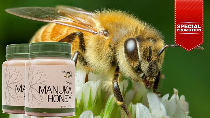 Honey Manuka [Promo]