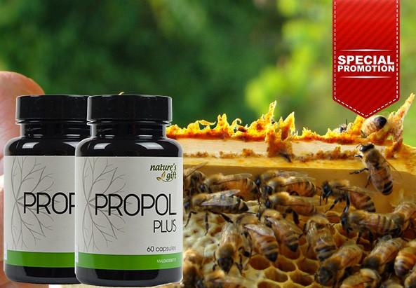 Propol Plus [Promo]