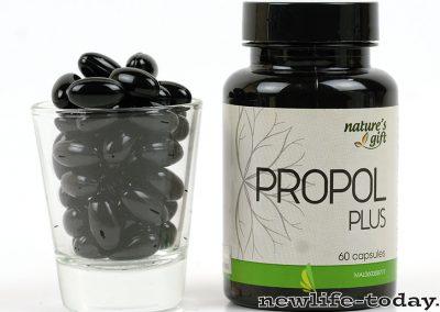 propolplus-3